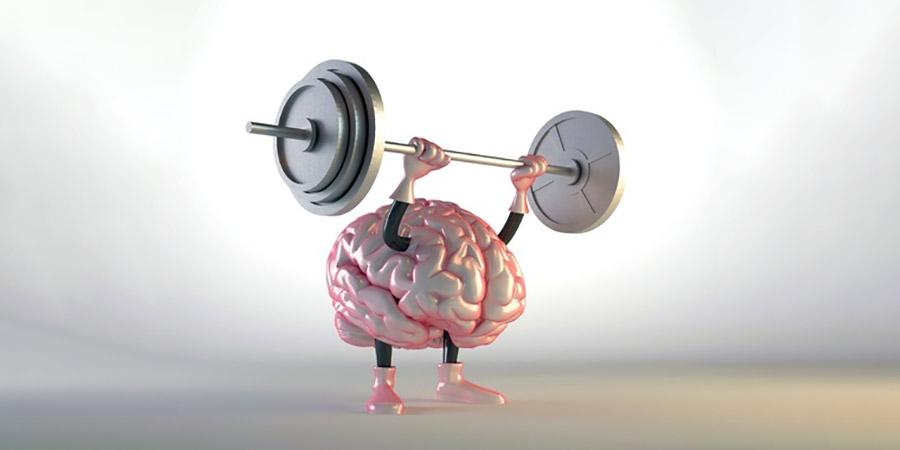 brain versus brawn