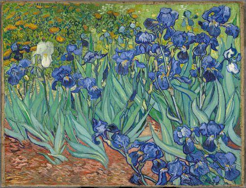 Van Gogh, lirios, Getty center, Los Ángeles (1889)