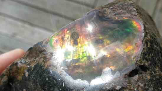 Ammolite from the alps