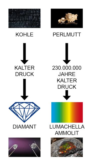 Entstehung Ammolit