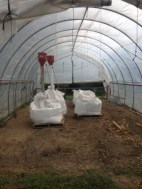 Rye in the hoop house getting aerated to bring down the moisture level