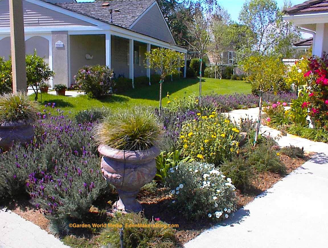 Xlandscape area: Tuscan style backyard landscaping ... on No Grass Backyard  id=61093