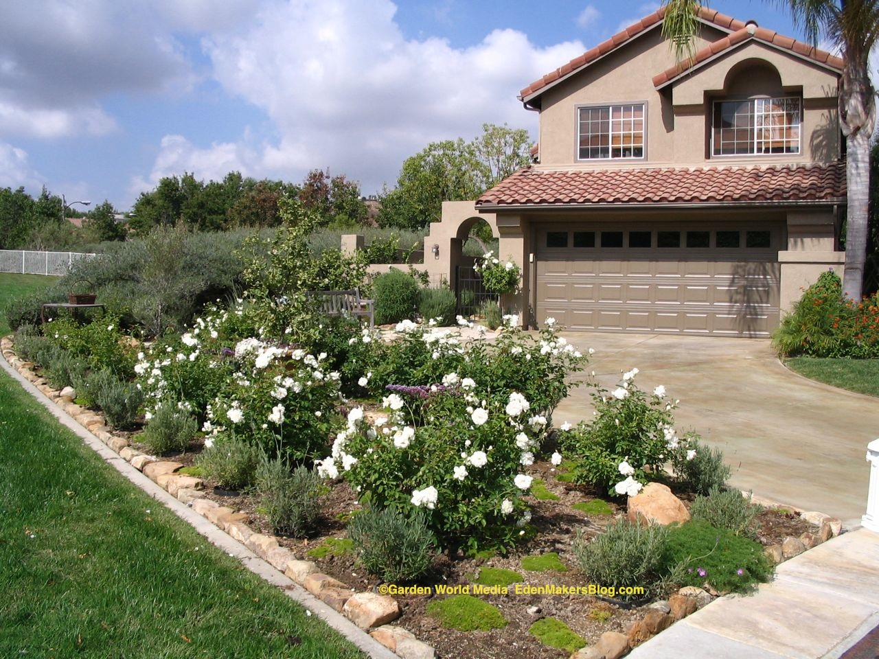 Front Yard Without Grass - Home Decorating Ideas on Backyard Ideas No Grass  id=17714
