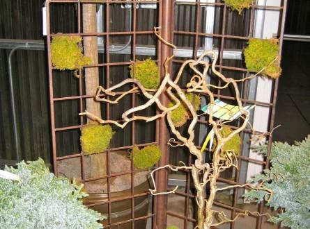 Metal trellis with checkerboard moss pattern in garden