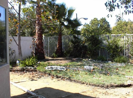 Backyard before makeover left side