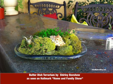 """Butter dish terrarium by Shirley Bovshow as seen on the Hallmark show, """"Home and Family"""""""