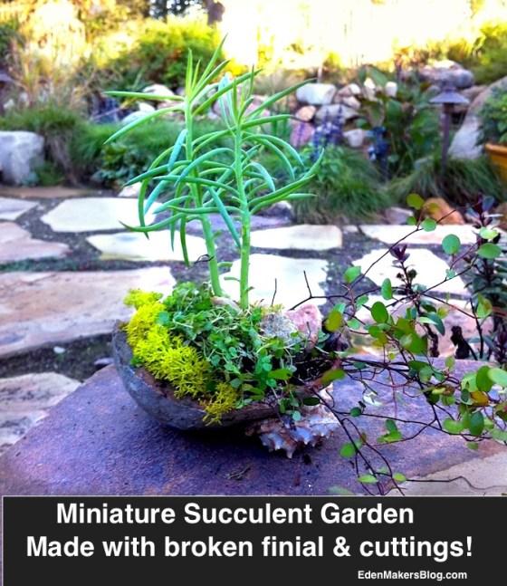 Broken-finial-made into miniature-garden-featuring succulent-cuttings by Shirley Bovshow  www.edenmakersblog