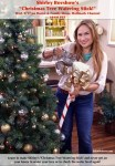 Shirley-Bovshows-Christmas-Tree-Watering-Stick