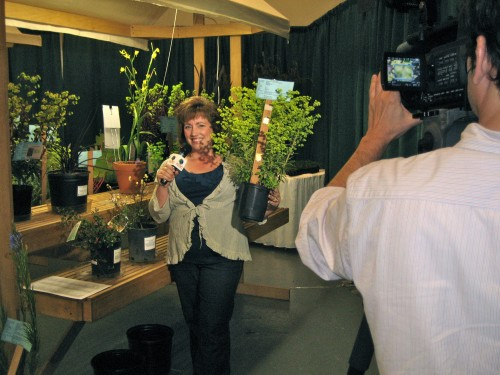 christina salwitz reporting for the Garden World Report