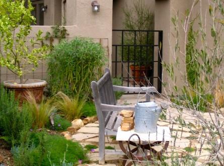 Garden bench with mediterranean plants