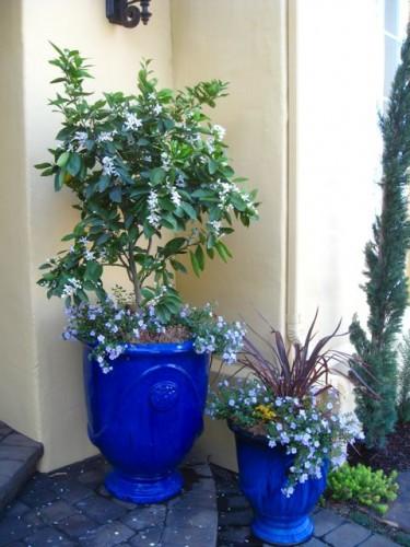 blue-pots2