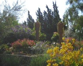 Mediterranean garden design by Shirley Bovshow