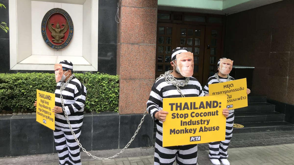 PETA protest at Thailand embassy