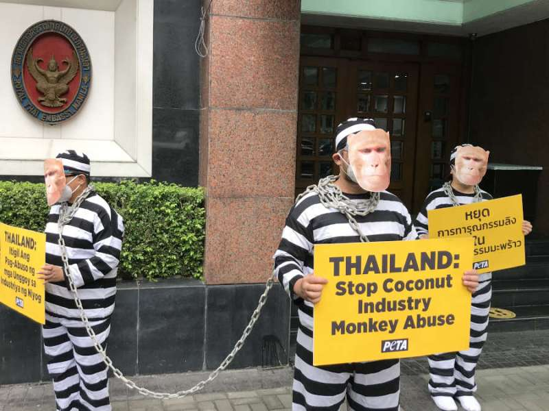 PETA protest at Thailand embassy