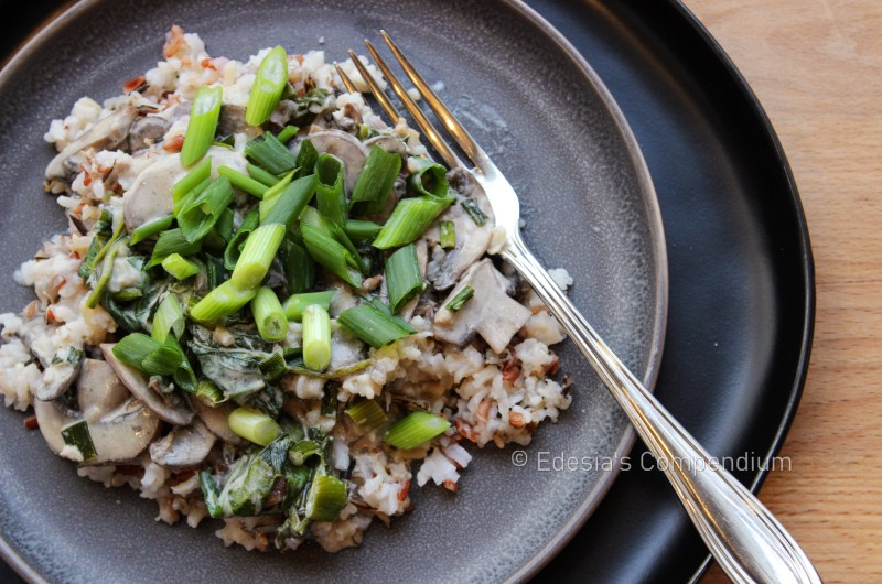 Mushroom Stroganoff with Wild Rice Blend