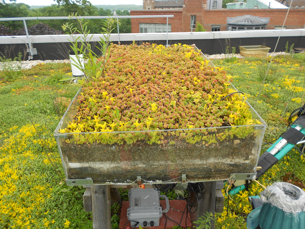 QUANTIFYING GREEN ROOF BENEFITS