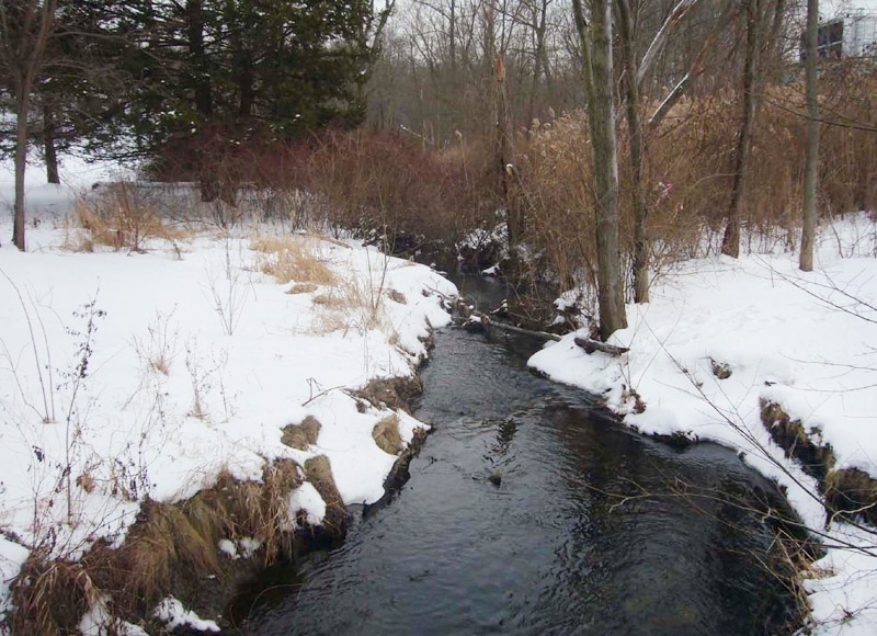 VASSAR COLLEGE STREAM RESTORATION