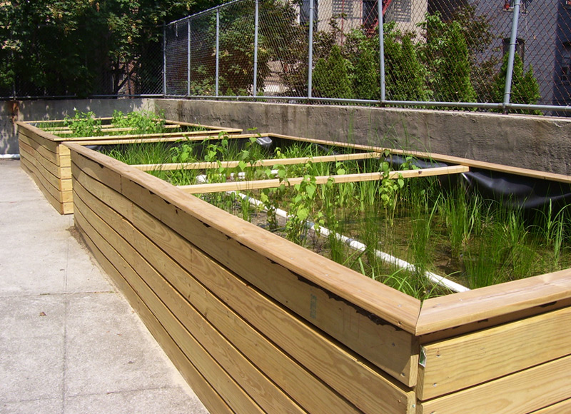 BRONX STORMWATER PLANTERS