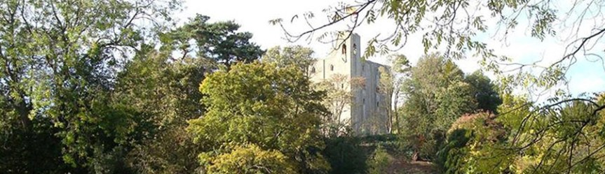 Banner - Hedingham Castle in Castle Hedingham, Essex