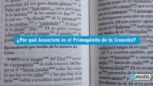 ¿Por qué Jesucristo es el Primogénito de la Creación?