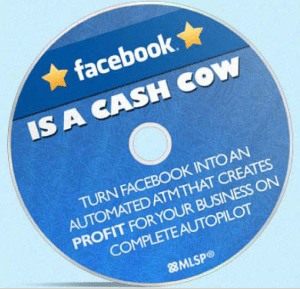 Make FaceBook Profitable