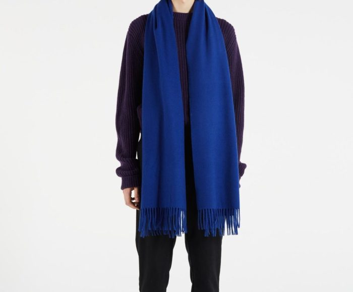 les 10 pépites dEdgard pour vous faire plaisir . écharpes hiver homme bleu tendance mode