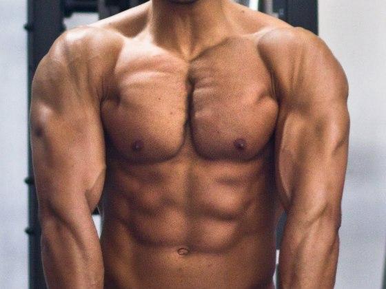comment muscler le haut de son corps