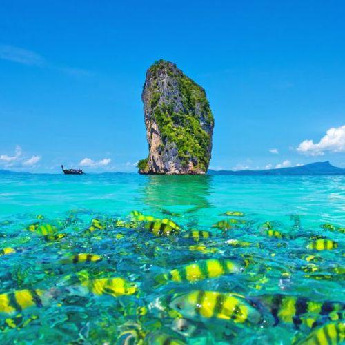 Eaux turquoise de phuket