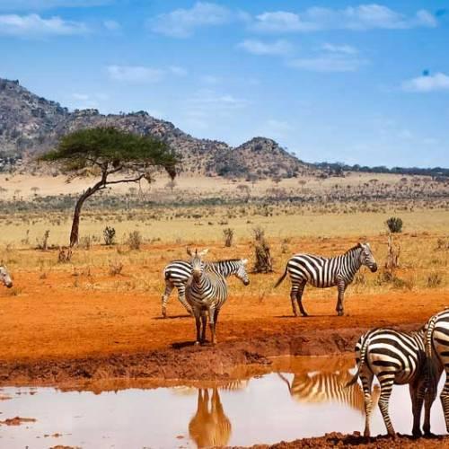 Kenya top destination de rêve