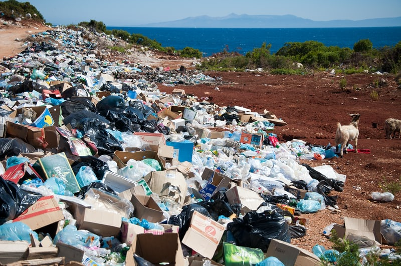 Pollution responsable écologie