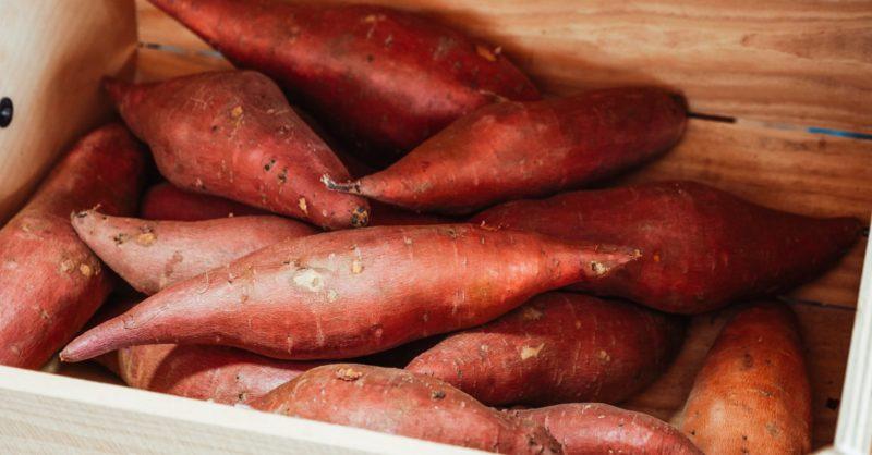 Ces 10 aliments qui font bronzer plus vite Patate douce