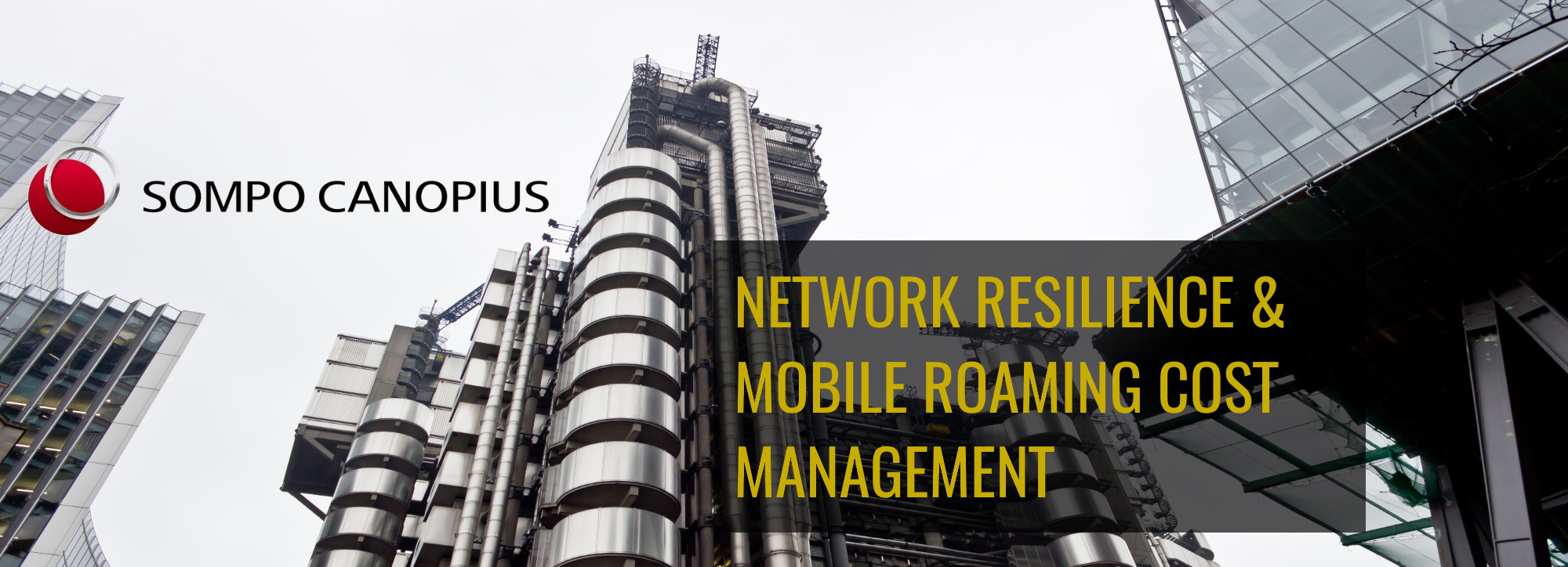 Network resilience and mobile roaming cost management case study