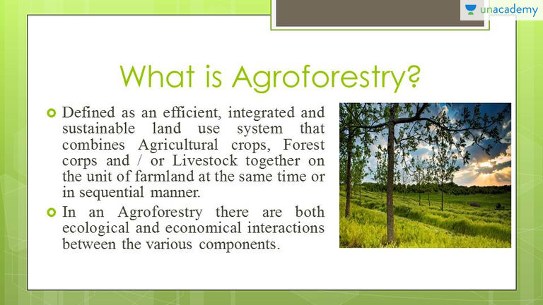 1.6 the definition of farming specifically includes raising or exhibiting livestock.the term livestock is not defined in the act and is therefore given its ordinary meaning. Upsc Cse Gs Agroforestry Definition Advantages And Disadvantages Offered By Unacademy