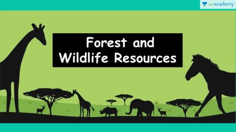 Read here the best ncert solutions. Upsc Cse Gs Forest Wildlife Resources 3 Offered By Unacademy