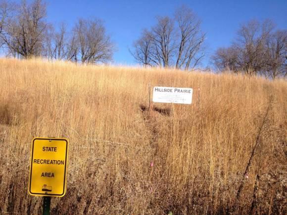 Hillside Prairie. Source: Author.