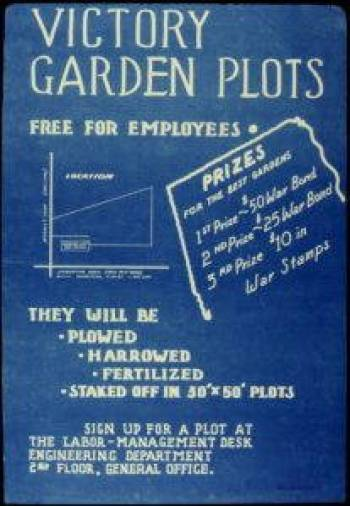 While victory gardens were tended by individual families or community groups, flyers like this one show that the gardens were also sponsored by many American companies. Those who responded to such opportunities connected themselves not only to the war effort but also to their place of employment as well. Public domain.