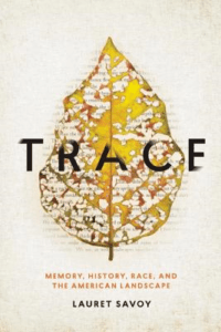 Book cover with image of leaf and title, Trace.
