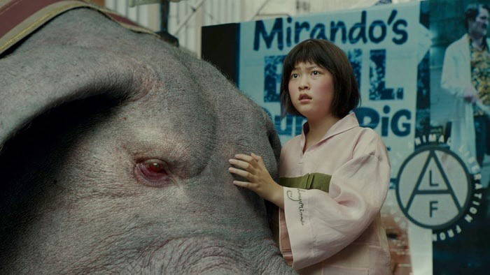 A costumed teenage Korean girl stands next to a large porcine animal with her hand on the animal's forehead. In the background, signs adversiting a corporate pig celebration and animal rights groups are visible.