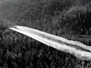 Black and white aerial photo of a conifer forest bisected diagonally by two constrails with a small sungle-wing airplane in flight the upper-left corner