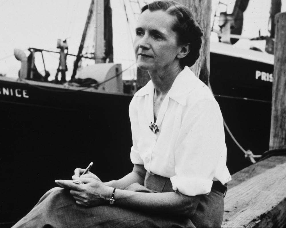 Rachel Carson sitting on a dock next to a large boat writing on a notepad with a pen and looking off into the distance.
