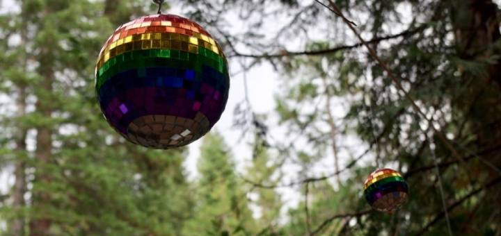 Two rainbow colored disco balls hanging from a tree with other trees in the background, photographed from below