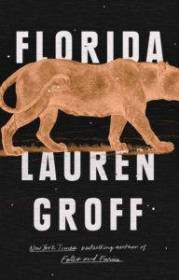 The cover of Lauren Groff's book Florida, a black background with an orange silhouette of a panther walking on orange grass