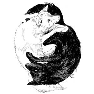A line drawing of two coyotes in a ying-yang design.
