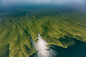 Lake Erie seen from above, with swaths of green ribbons cutting through the blue water, evidence of an ongoing algal bloom