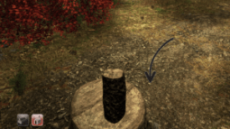 A split log on a tree stump