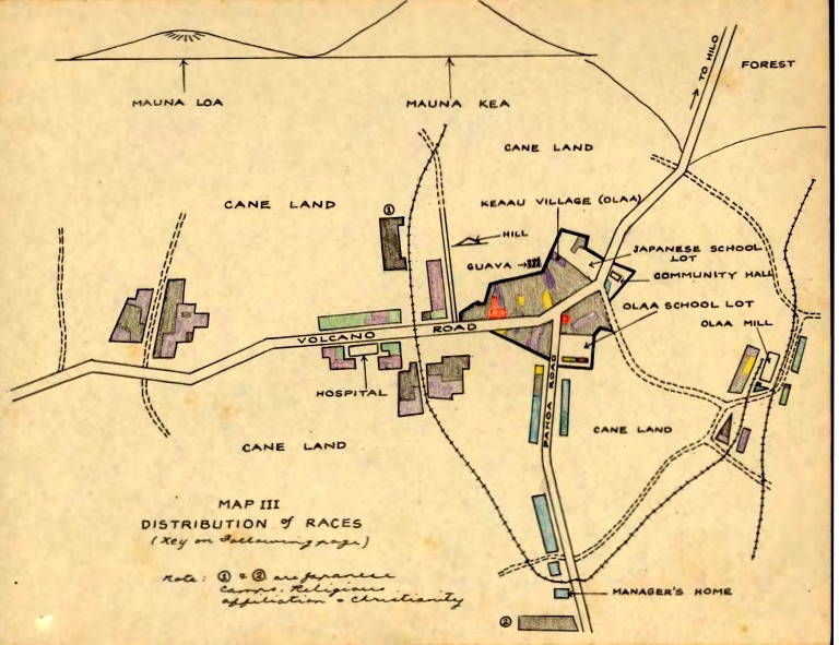 """Yellowed map of plantation shows """"distribution of races"""""""