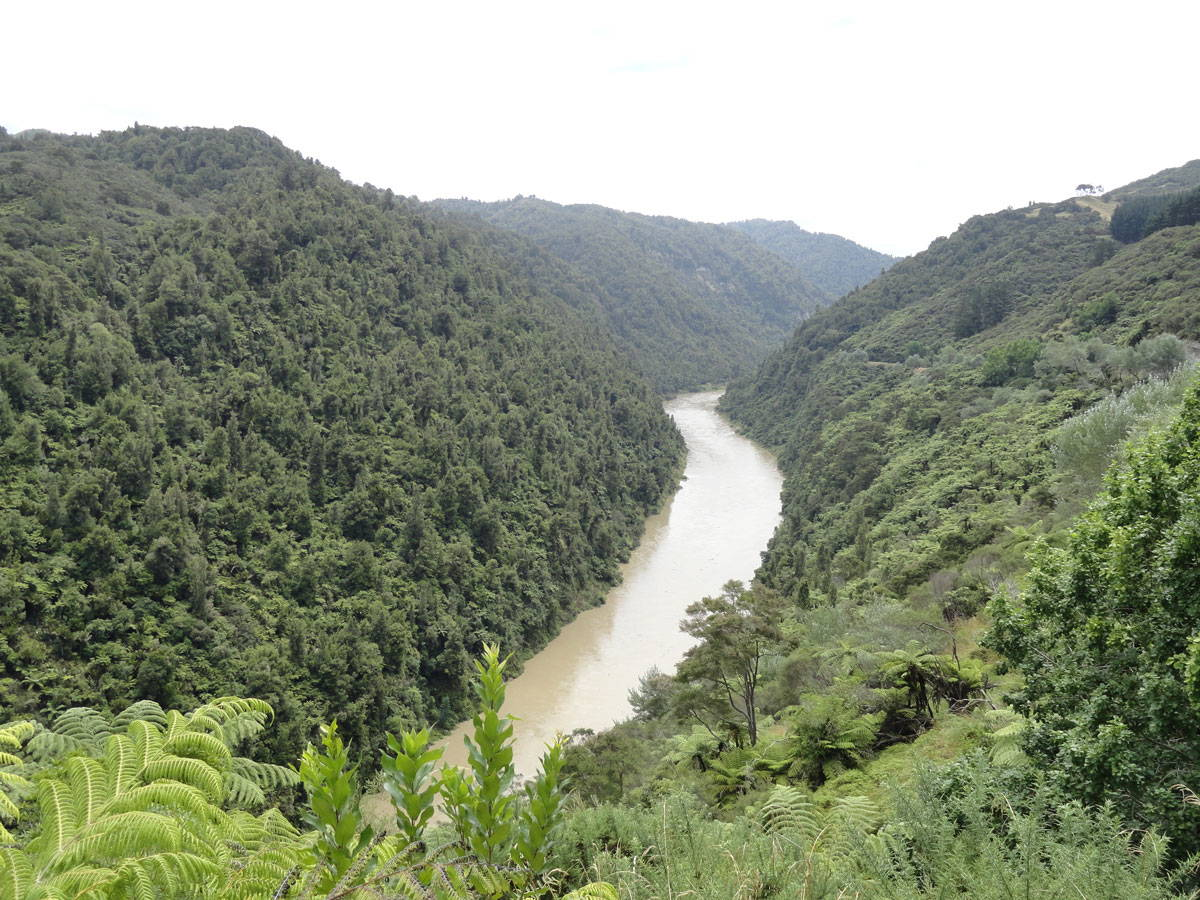 A river and wooded hills