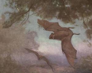An illustration of two bats flying at dusk