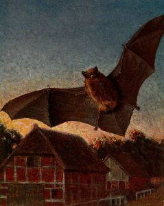 An illustration of a bat flying over red barns