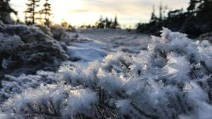 Close up of ice crystals on glacier. Sunset in background.